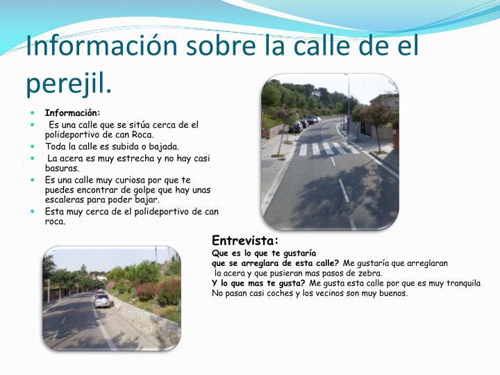 Información sobre la calle de el perejil.