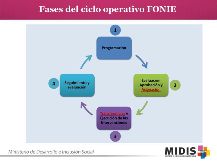 Fases del ciclo operativo FONIE