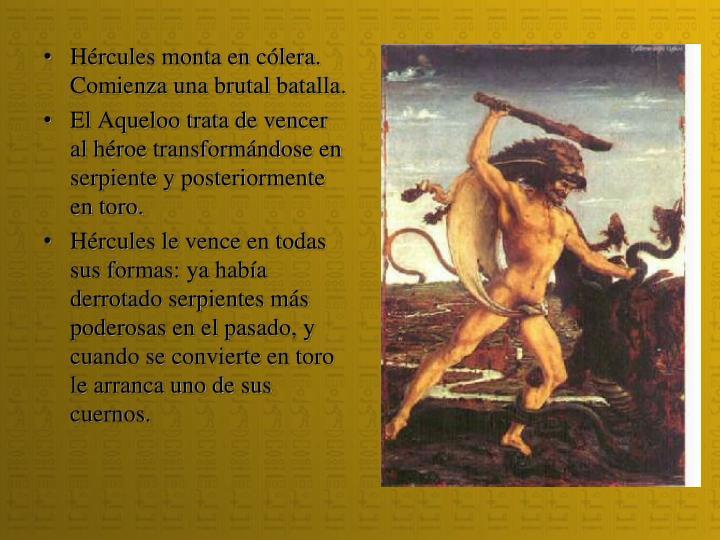 Hércules monta en cólera. Comienza una brutal batalla.