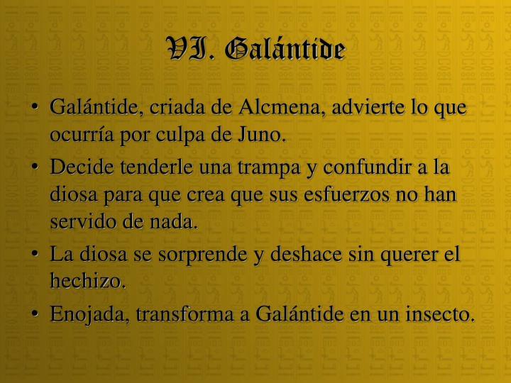 VI. Galántide