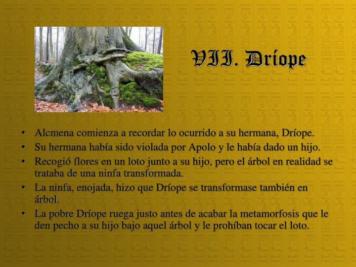 VII. Dríope