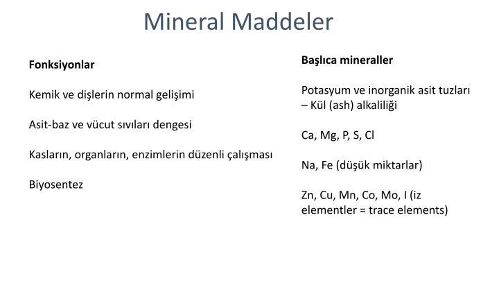 Başlıca mineraller