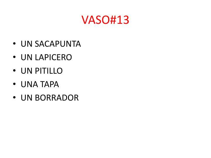 VASO#13