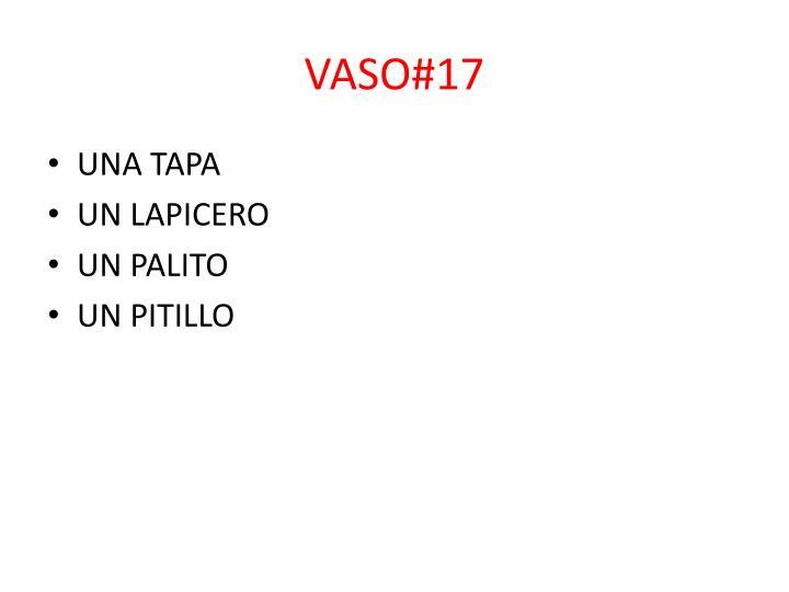 VASO#17