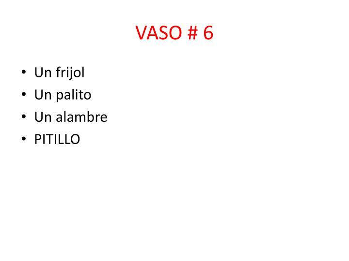 VASO # 6
