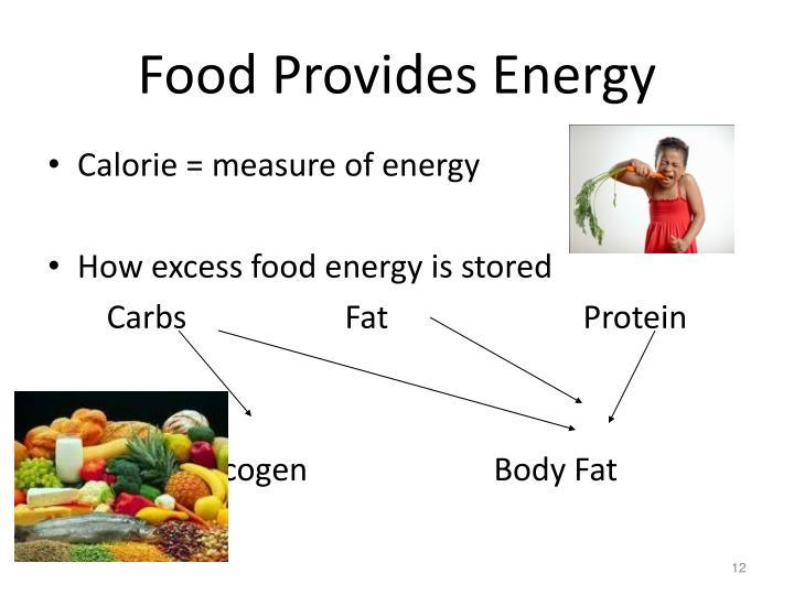 Food Provides Energy
