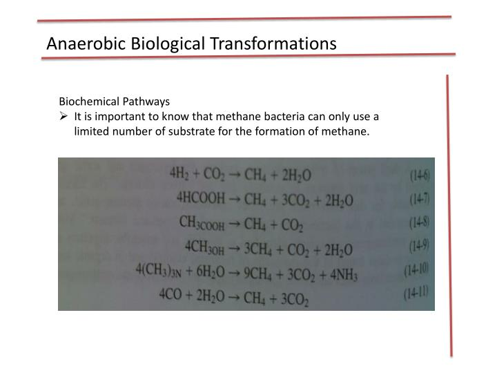 Anaerobic Biological Transformations