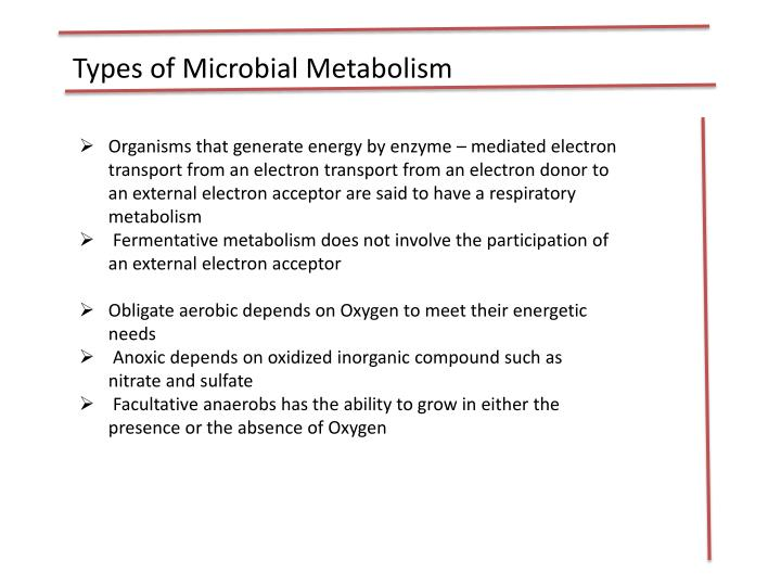 Types of Microbial Metabolism