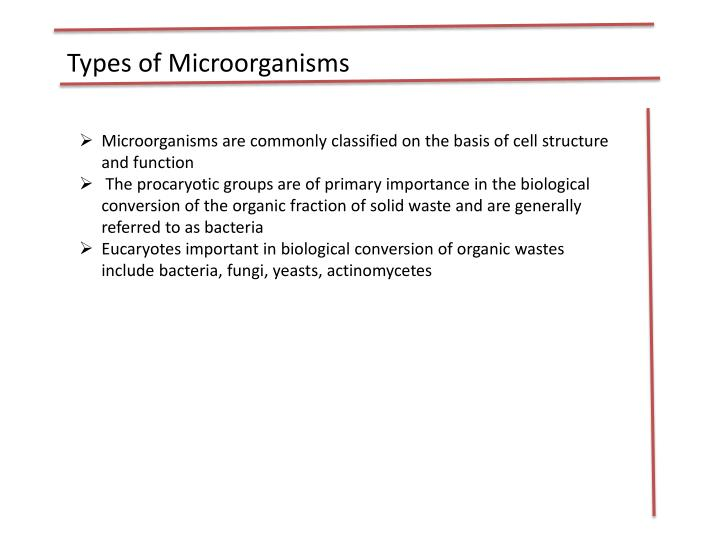 Types of Microorganisms