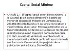 capital social m nimo