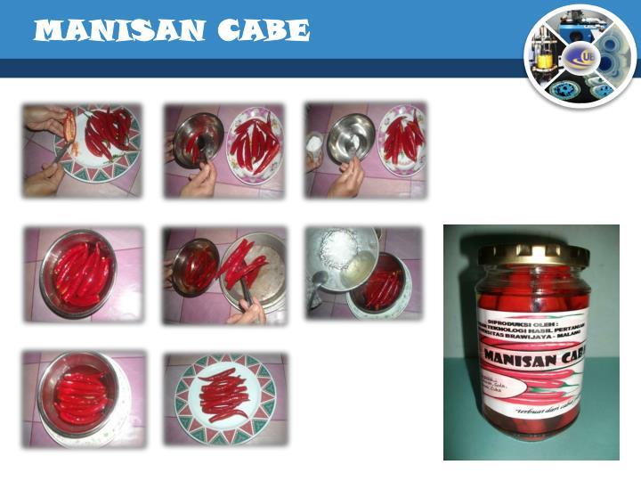 MANISAN CABE