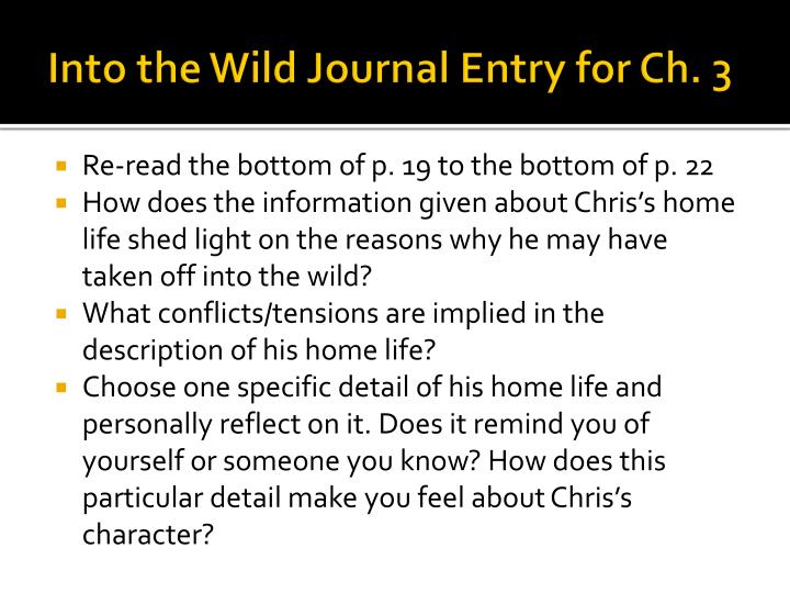 Into the Wild Journal Entry for Ch. 3