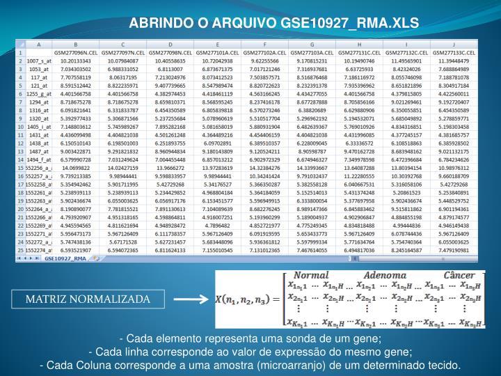 ABRINDO O ARQUIVO GSE10927_RMA.XLS