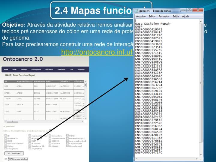 2.4 Mapas funcionais