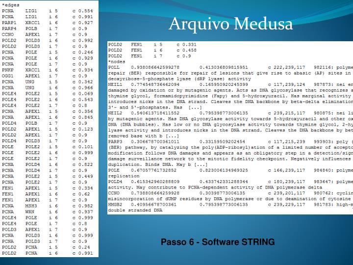 Arquivo Medusa