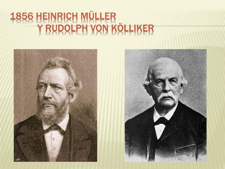 1856 Heinrich Müller