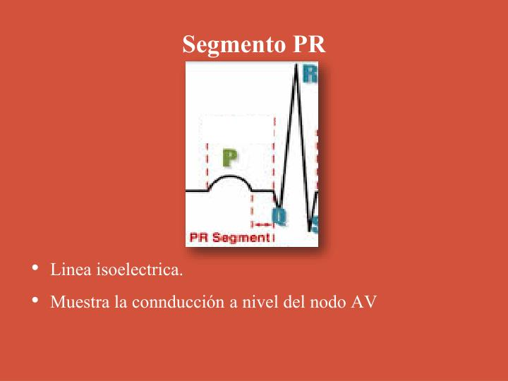 Segmento PR