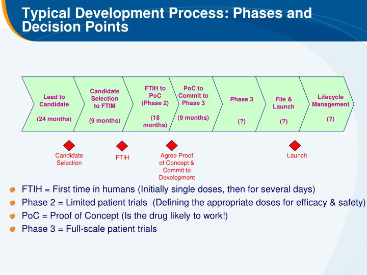 Process Development Phase : Ppt non clinical safety studies powerpoint presentation