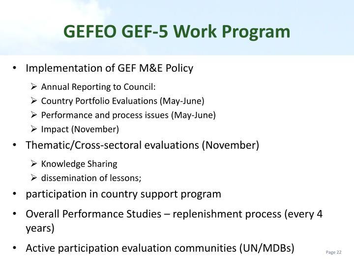 GEFEO GEF-5 Work Program
