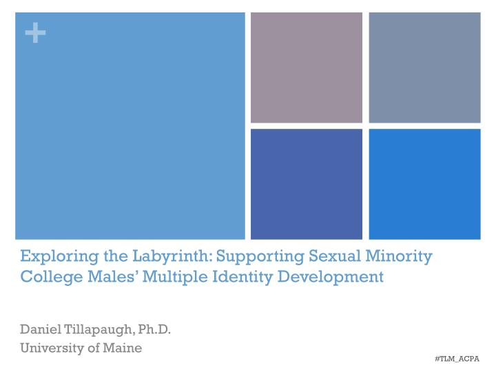 exploring the labyrinth supporting sexual minority college males multiple identity development