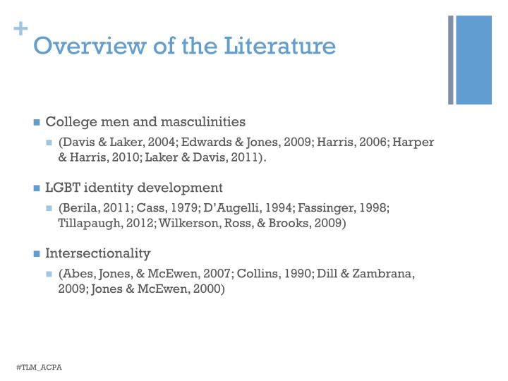 Overview of the Literature