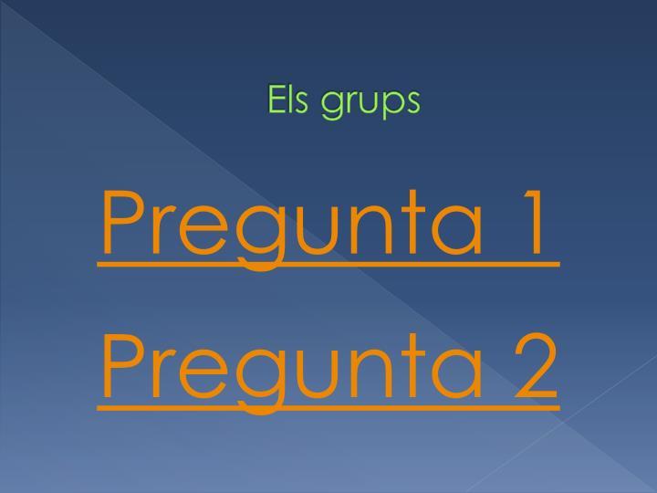 Els grups