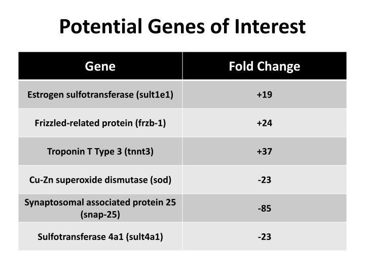 Potential Genes of Interest