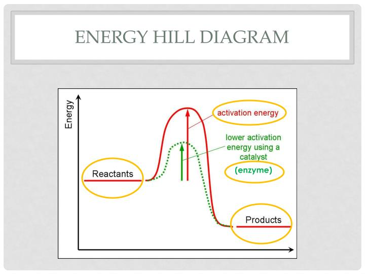 Energy Hill Diagram