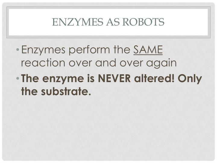 Enzymes as robots