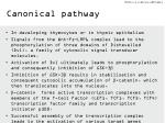 canonical pathway