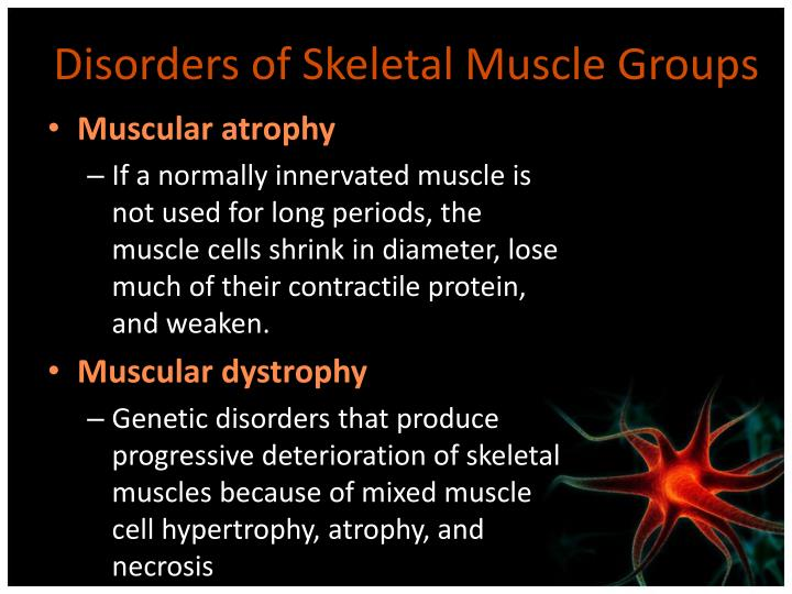 Disorders of Skeletal Muscle Groups
