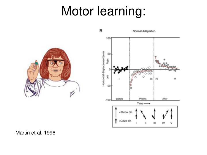 Motor learning: