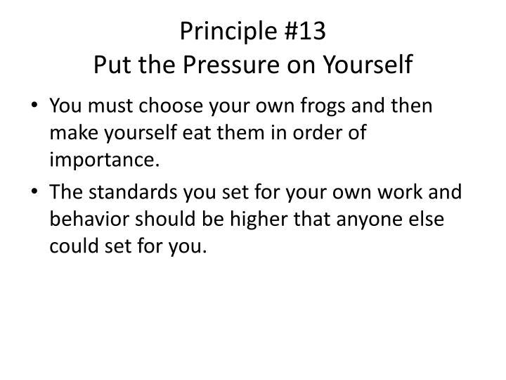 Principle #13