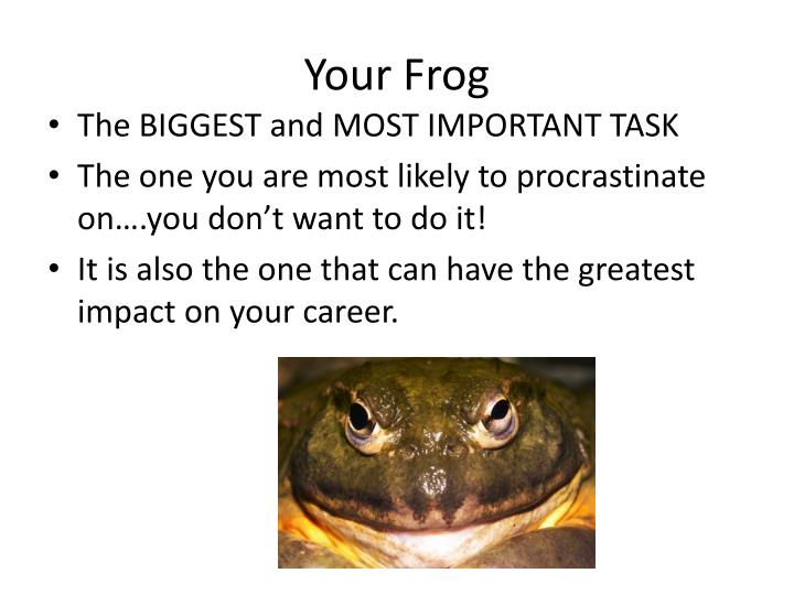 Your Frog