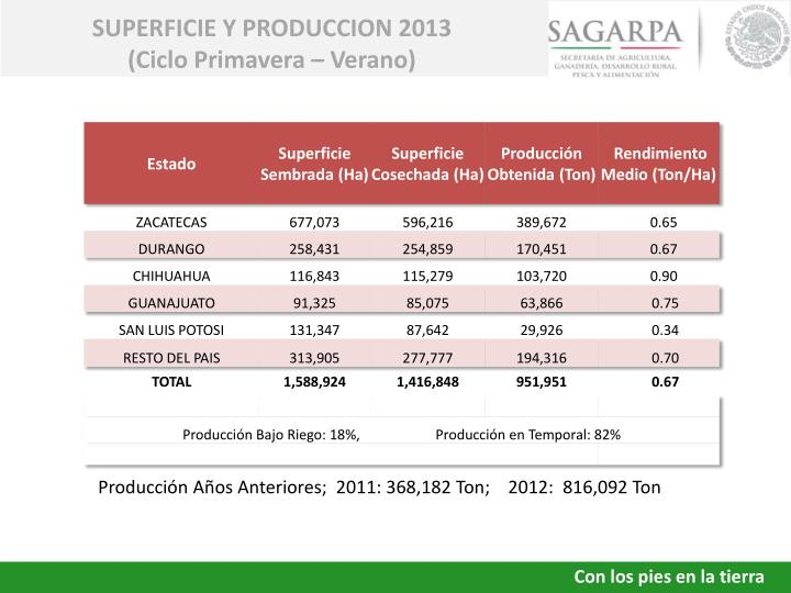 SUPERFICIE Y PRODUCCION 2013