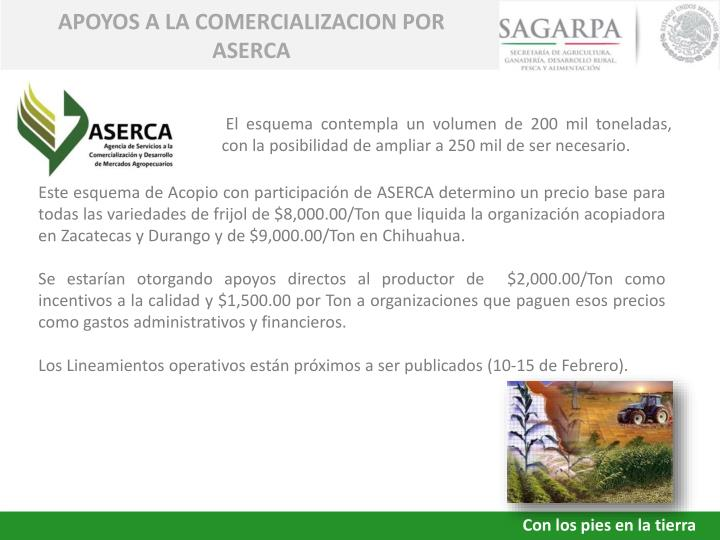 APOYOS A LA COMERCIALIZACION POR ASERCA