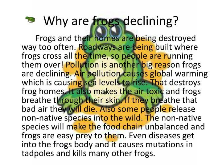 Why are frogs declining