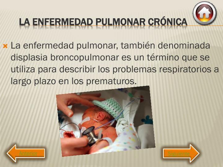 La enfermedad pulmonar, también denominada displasia broncopulmonar es un término que se utiliza para describir los problemas respiratorios a largo plazo en los prematuros.