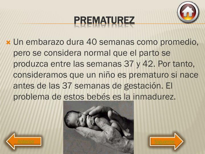 Un embarazo dura 40 semanas como promedio, pero se considera normal que el parto se produzca entre las semanas 37 y 42. Por tanto, consideramos que un niño es prematuro si nace antes de las 37 semanas de gestación. El problema de estos bebés es la inmadurez.