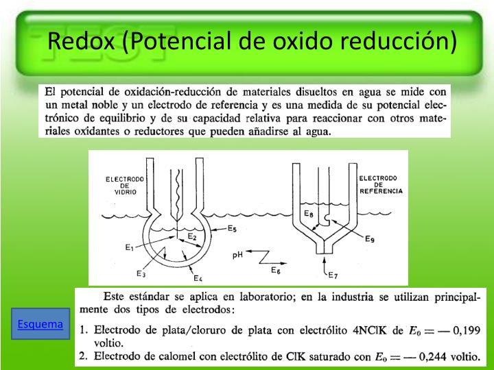 Redox (Potencial de oxido reducción)