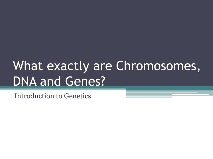 What exactly are chromosomes dna and genes