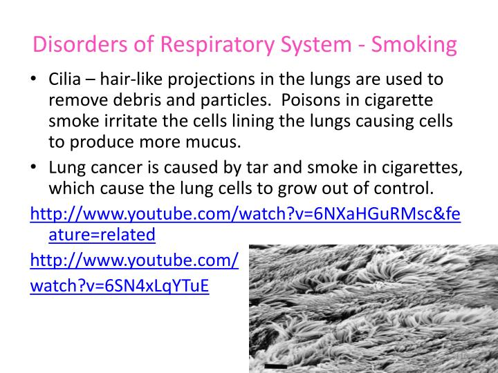 Disorders of Respiratory System - Smoking