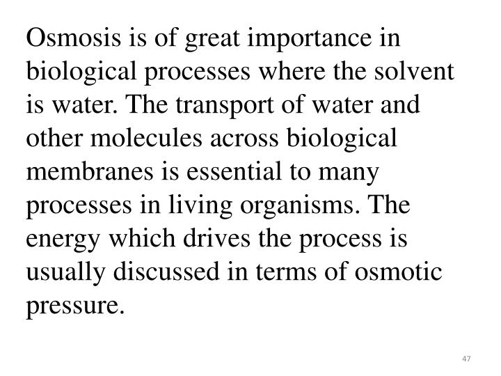 Osmosis is of great importance in biological processes where the solvent is water. The transport of water and other molecules across biological membranes is essential to many processes in living organisms. The energy which drives the process is usually discussed in terms of osmotic pressure.