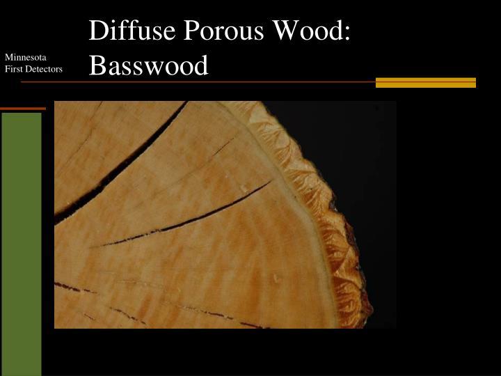 Diffuse Porous Wood: Basswood