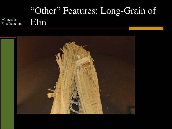 """Other"" Features: Long-Grain of Elm"