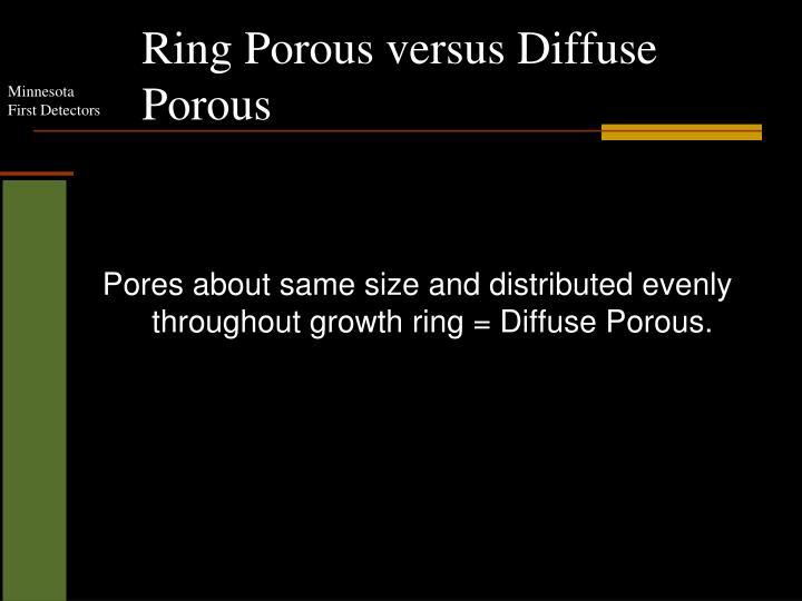 Ring Porous versus Diffuse Porous
