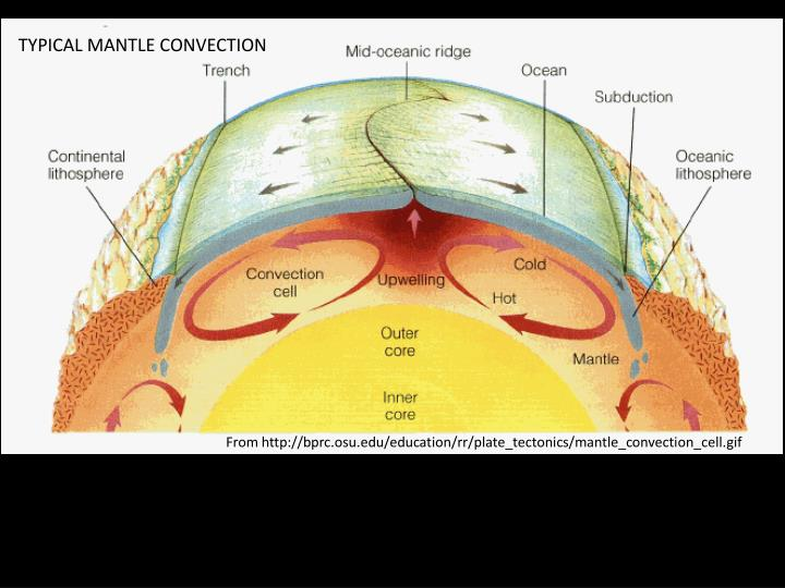 TYPICAL MANTLE CONVECTION