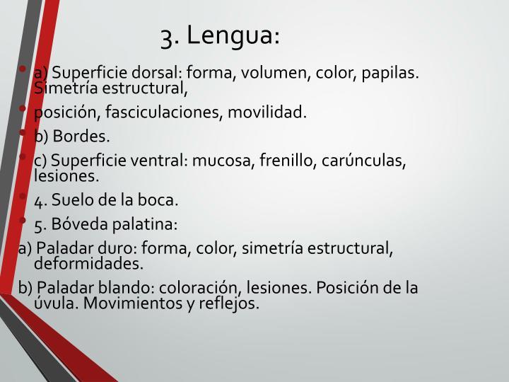 3. Lengua: