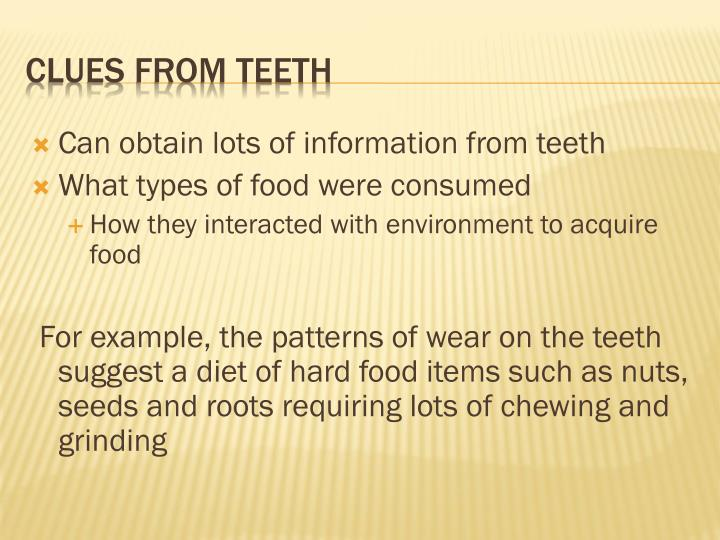 Can obtain lots of information from teeth