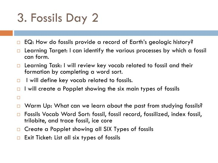 3 fossils day 2